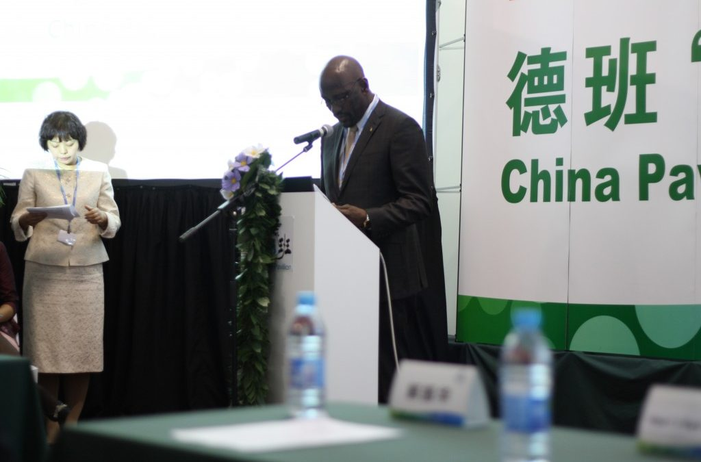 China promotes South-South Cooperation in Durban